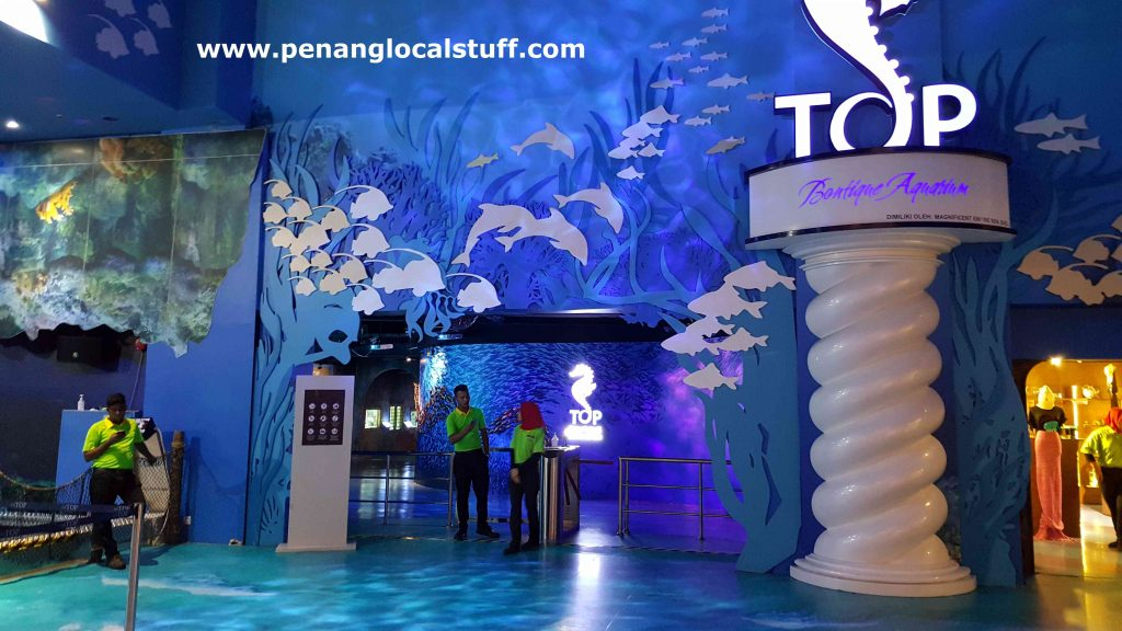 The Top Penang Boutique Aquarium