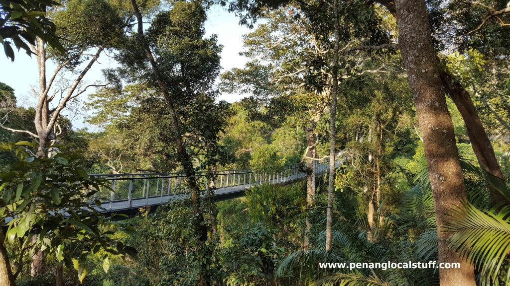 Langur Way Canopy Walk