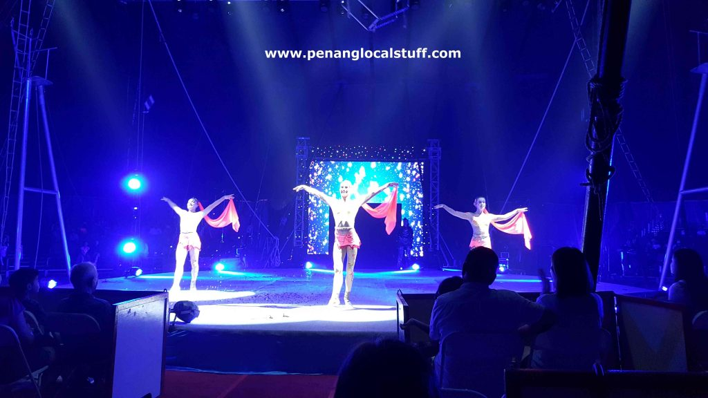 The Moscow Circus Performance